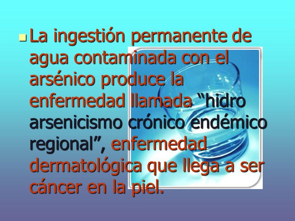 La ingestión permanente de agua contaminada con el arsénico produce la enfermedad llamada hidro arsenicismo crónico endémico regional, enfermedad dermatológica que llega a ser cáncer en la piel.