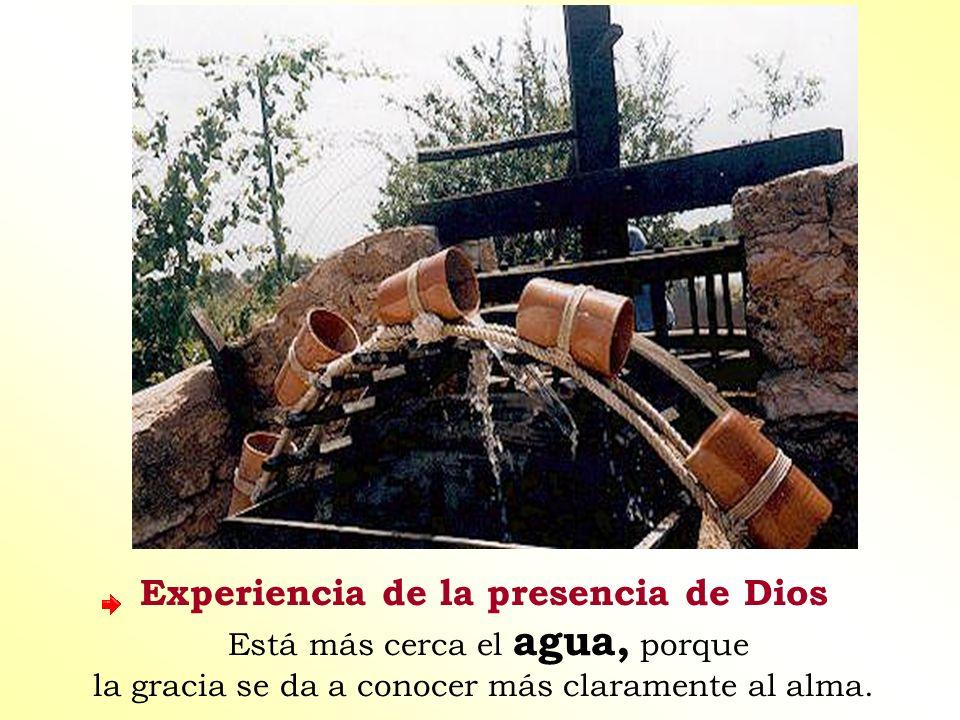 Experiencia de la presencia de Dios Está más cerca el agua, porque la gracia se da a conocer más claramente al alma.