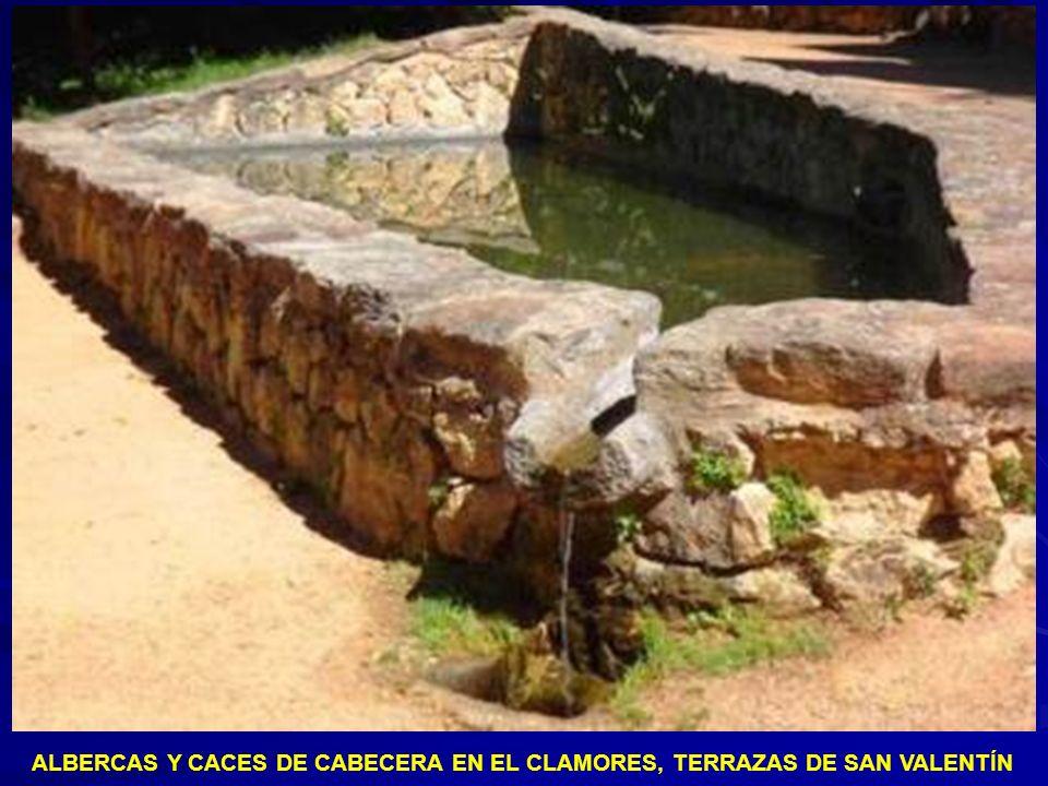 ALBERCAS Y CACES DE CABECERA EN EL CLAMORES SITUADOS EN LAS TERRAZAS DE SAN VALENTÍN