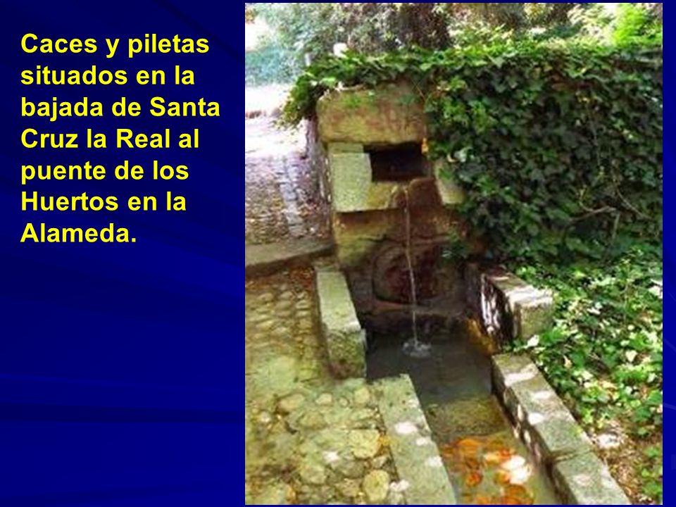 Fuente en la plaza de el Salvador