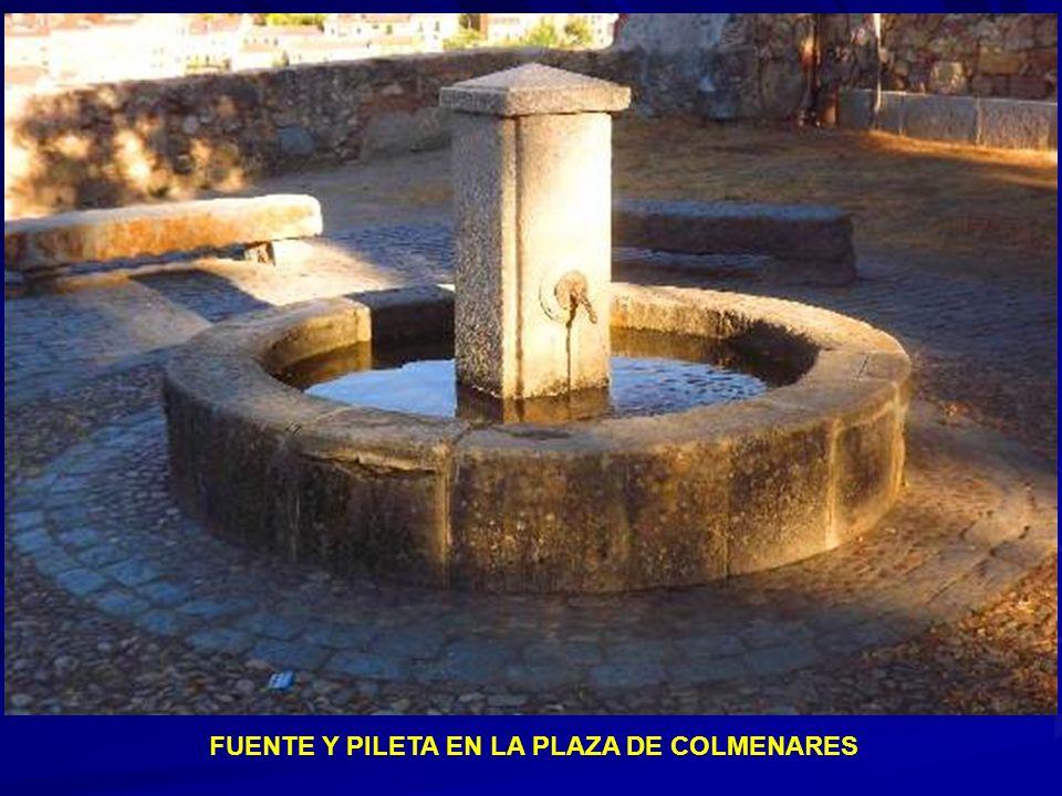 Cacera situada detrás de la plaza de San Lorenzo en la calle Cardenal Zúñiga.