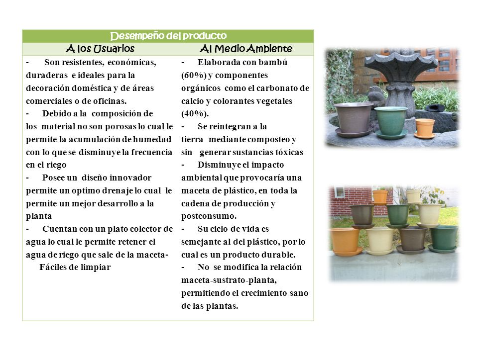 Desempeño del producto A los UsuariosAl Medio Ambiente - Son resistentes, económicas, duraderas e ideales para la decoración doméstica y de áreas come