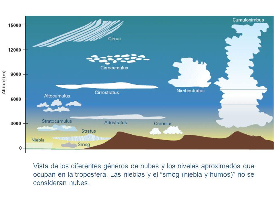 Vista de los diferentes géneros de nubes y los niveles aproximados que ocupan en la troposfera. Las nieblas y el smog (niebla y humos) no se considera