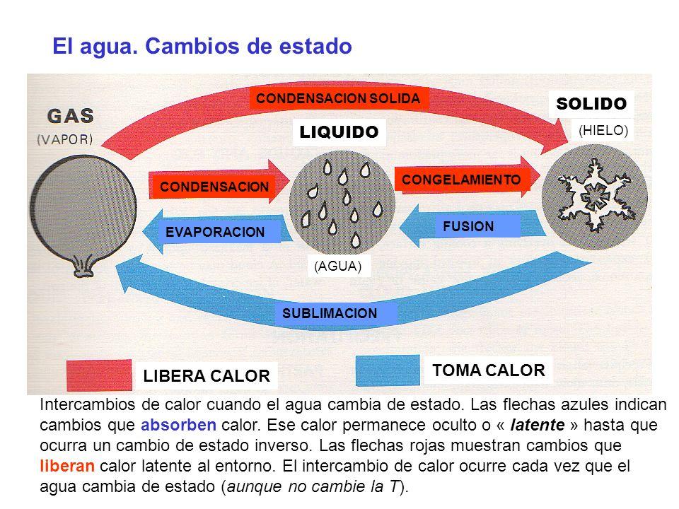 LIBERA CALOR TOMA CALOR LIQUIDO SOLIDO CONDENSACION CONGELAMIENTO CONDENSACION SOLIDA SUBLIMACION EVAPORACION FUSION (HIELO) (AGUA) El agua. Cambios d