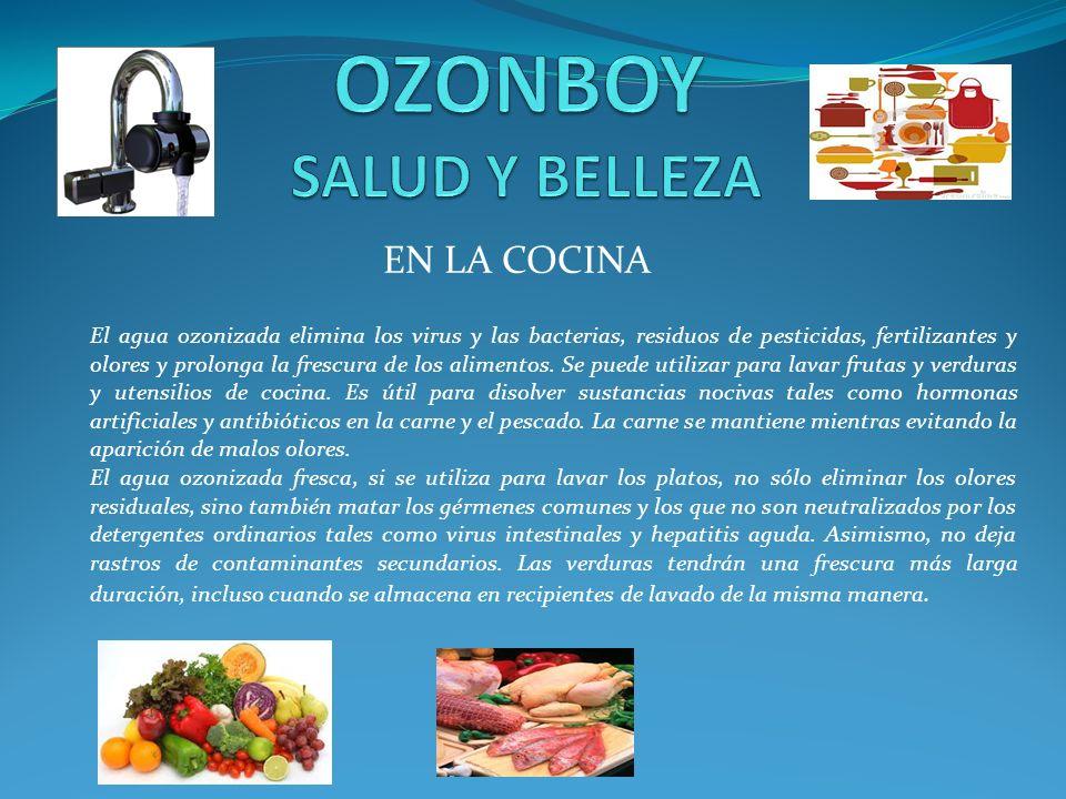 EN LA COCINA El agua ozonizada elimina los virus y las bacterias, residuos de pesticidas, fertilizantes y olores y prolonga la frescura de los aliment