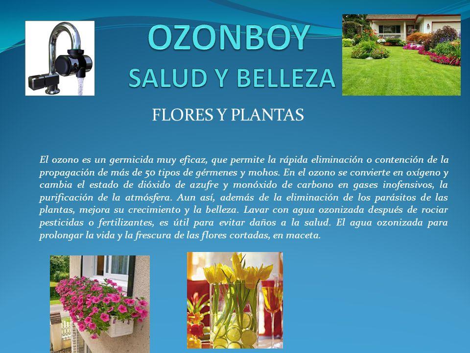 FLORES Y PLANTAS El ozono es un germicida muy eficaz, que permite la rápida eliminación o contención de la propagación de más de 50 tipos de gérmenes