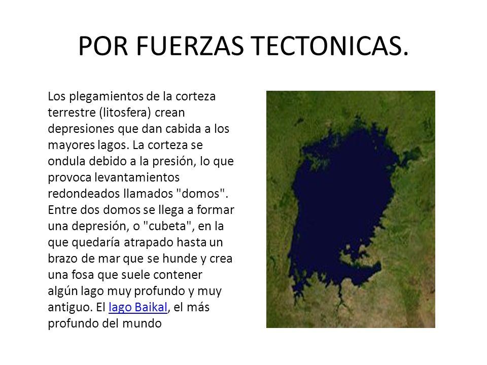 POR FUERZAS TECTONICAS. Los plegamientos de la corteza terrestre (litosfera) crean depresiones que dan cabida a los mayores lagos. La corteza se ondul