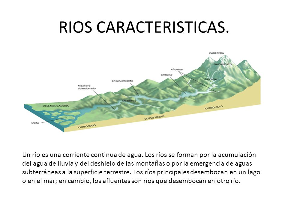 RIOS CARACTERISTICAS. Un río es una corriente continua de agua. Los ríos se forman por la acumulación del agua de lluvia y del deshielo de las montaña