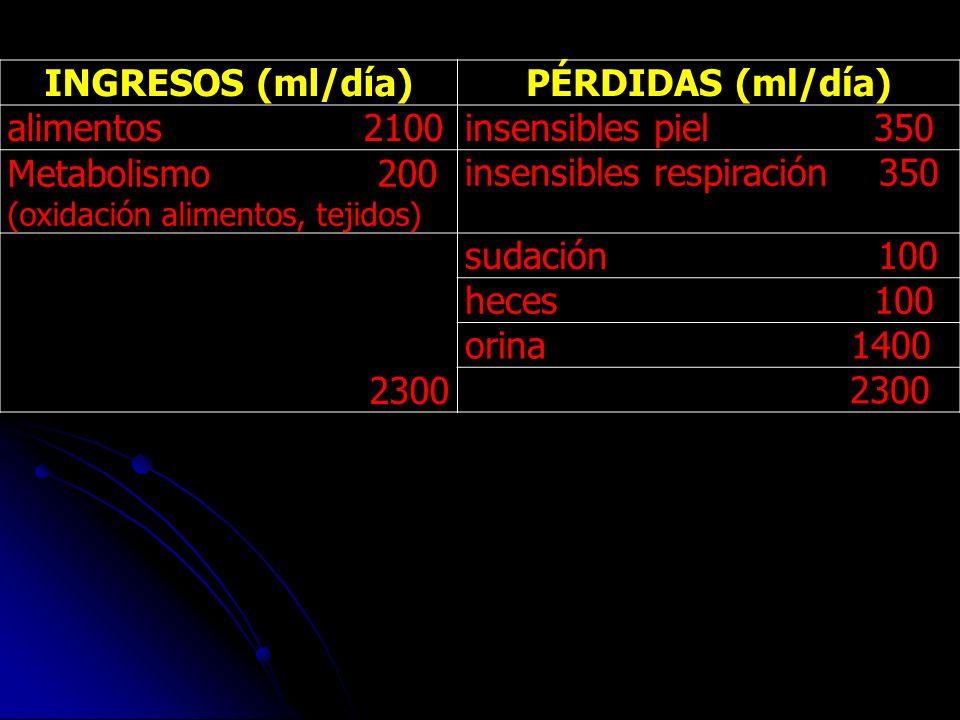 INGRESOS (ml/día)PÉRDIDAS (ml/día) alimentos 2100insensibles piel 350 Metabolismo 200 (oxidación alimentos, tejidos) insensibles respiración 350 2300