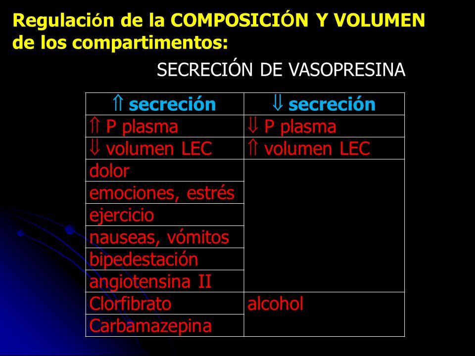 Regulaci ó n de la COMPOSICI Ó N Y VOLUMEN de los compartimentos: SECRECIÓN DE VASOPRESINA secreción P plasma volumen LEC dolor emociones, estrés ejer