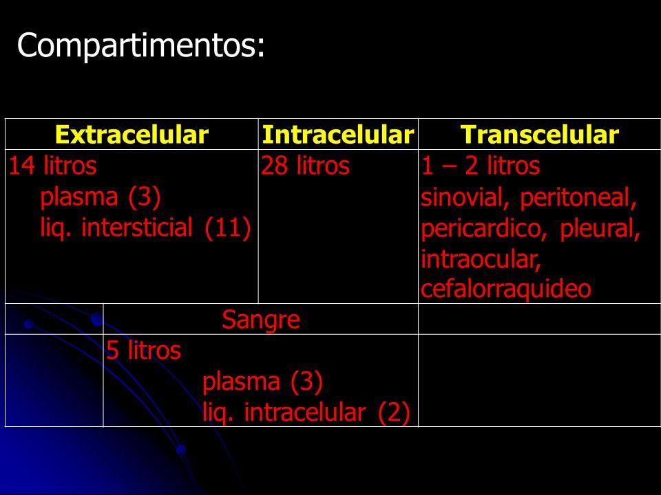 Compartimentos: ExtracelularIntracelularTranscelular 14 litros plasma (3) liq. intersticial (11) 28 litros1 – 2 litros sinovial, peritoneal, pericardi