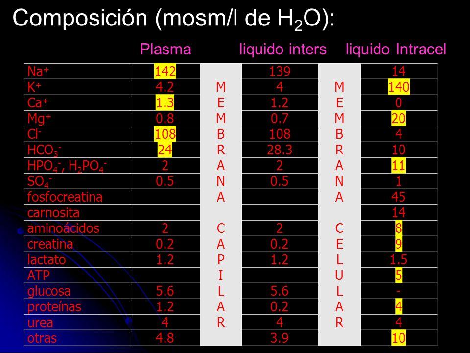 Composición (mosm/l de H 2 O): Plasma liquido intersliquido Intracel Na + 142 MEMBRANACAPILARMEMBRANACAPILAR 139 MEMBRANACELULARMEMBRANACELULAR 14 K+K
