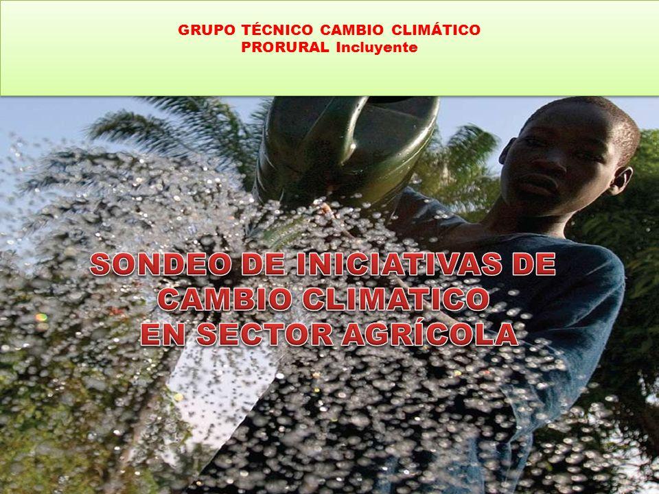 GRUPO TÉCNICO CAMBIO CLIMÁTICO PRORURAL Incluyente