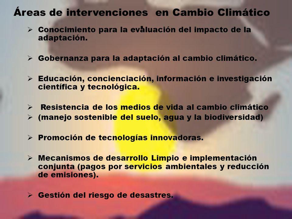 Áreas de intervenciones en Cambio Climático.