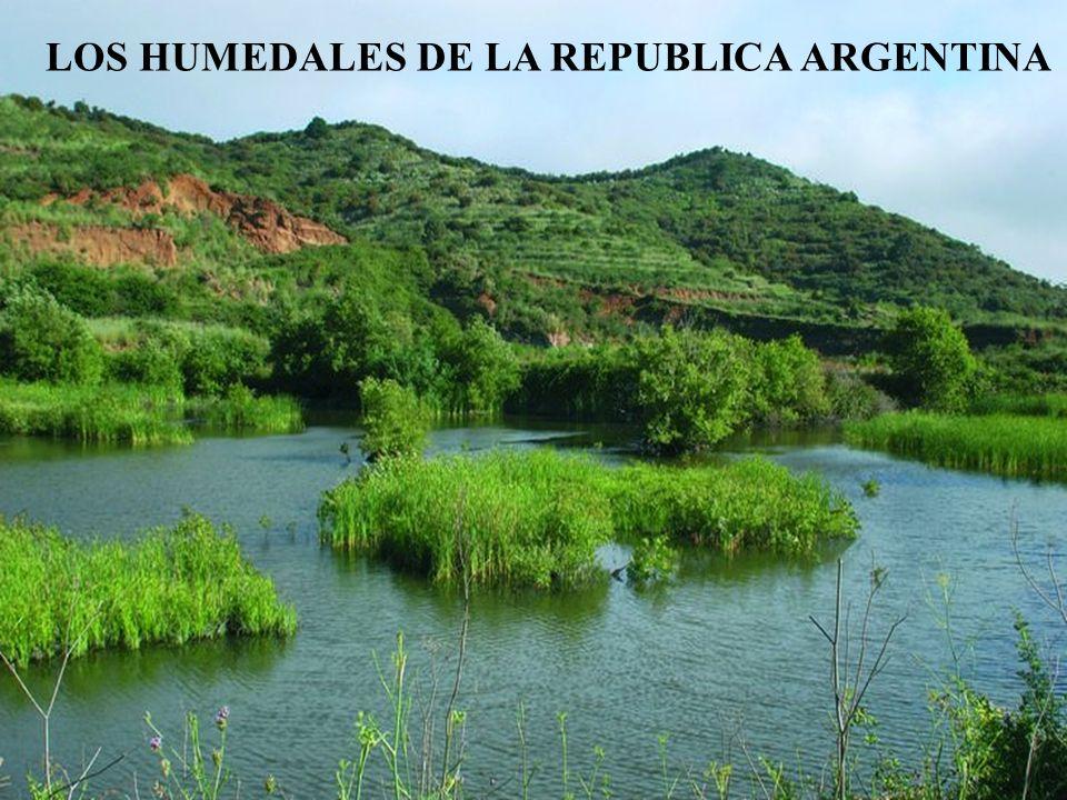 LOS HUMEDALES DE LA REPUBLICA ARGENTINA