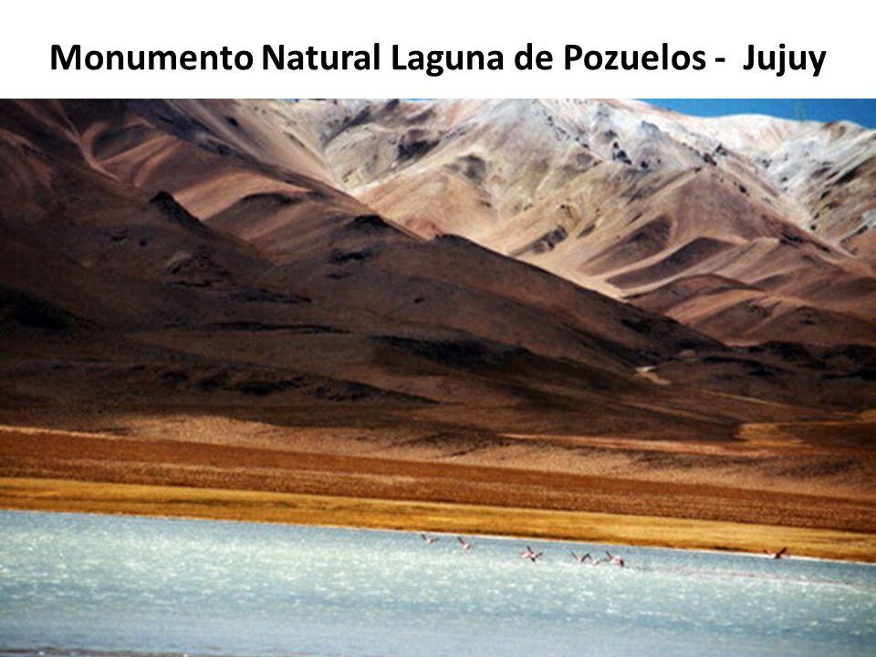 Monumento Natural Laguna de Pozuelos - Jujuy