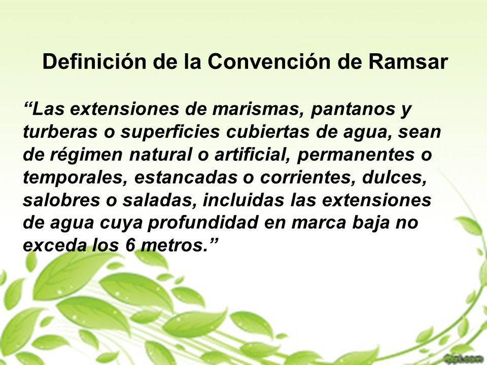 Definición de la Convención de Ramsar Las extensiones de marismas, pantanos y turberas o superficies cubiertas de agua, sean de régimen natural o arti
