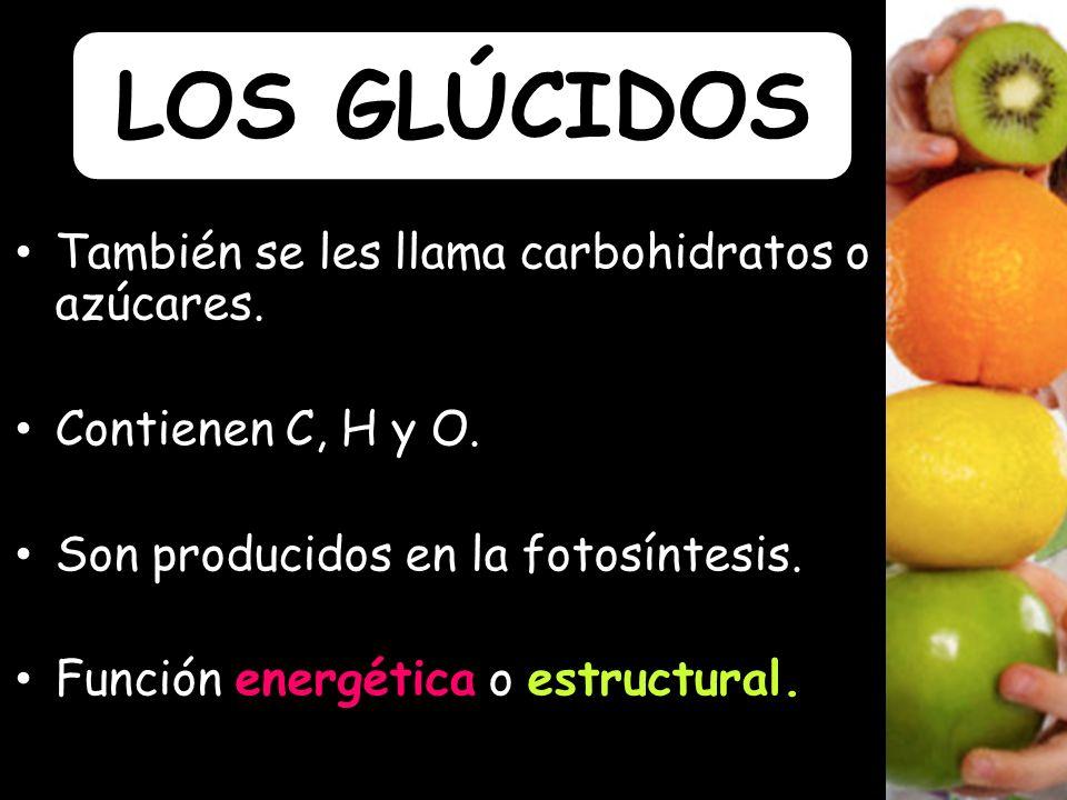 También se les llama carbohidratos o azúcares.Contienen C, H y O.