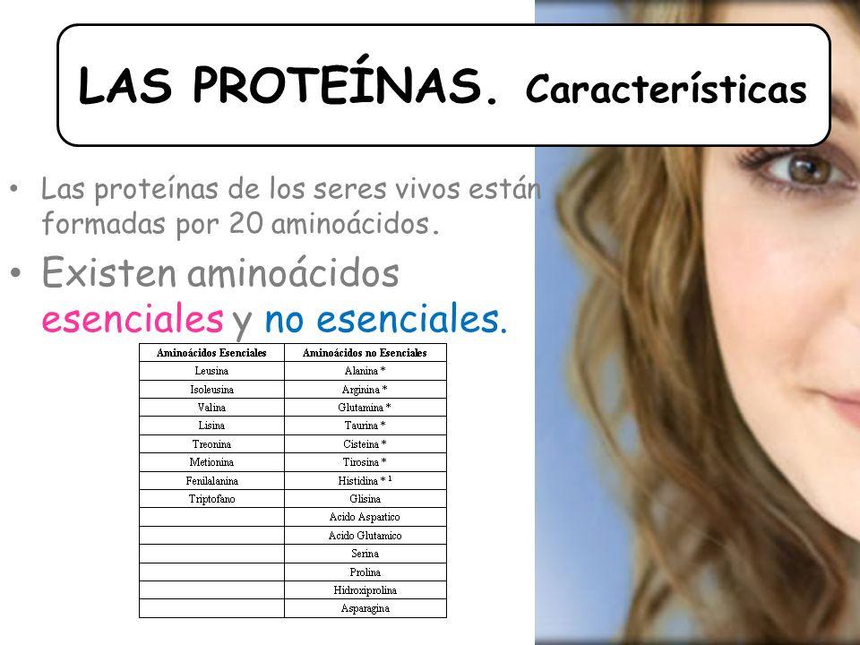 Las proteínas de los seres vivos están formadas por 20 aminoácidos.