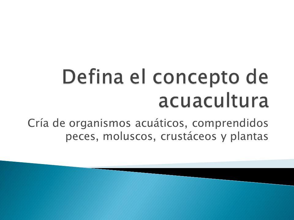 Cría de organismos acuáticos, comprendidos peces, moluscos, crustáceos y plantas