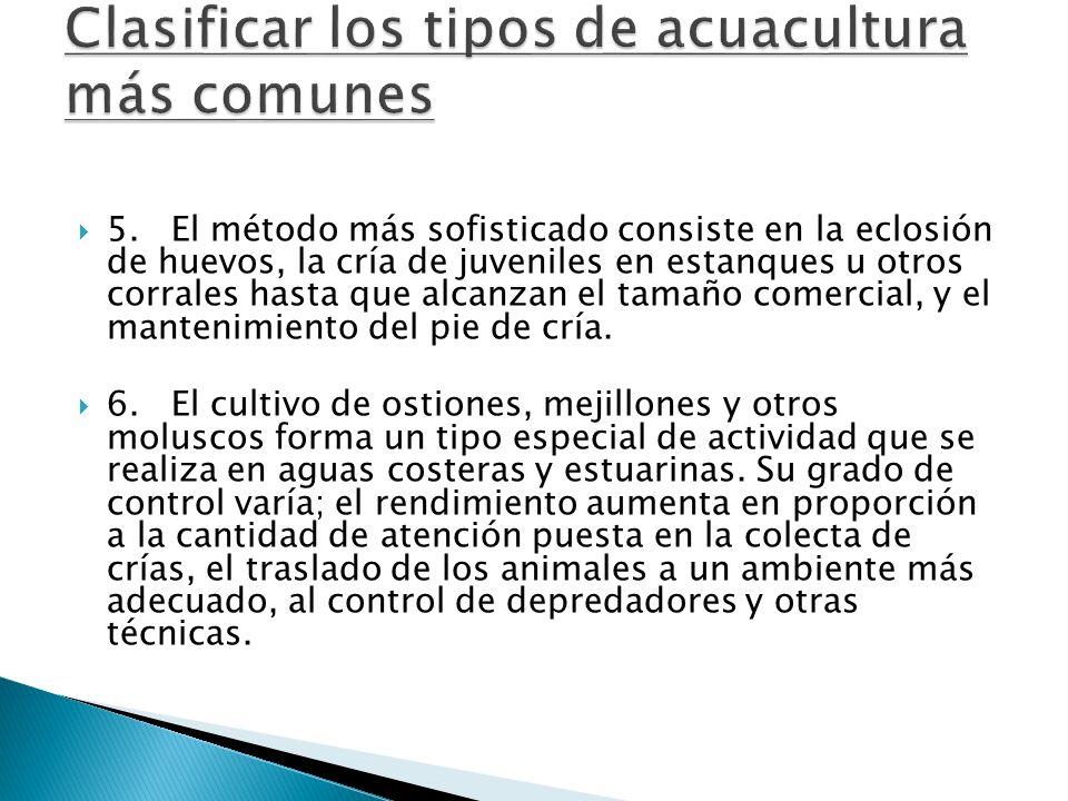 5. El método más sofisticado consiste en la eclosión de huevos, la cría de juveniles en estanques u otros corrales hasta que alcanzan el tamaño comerc