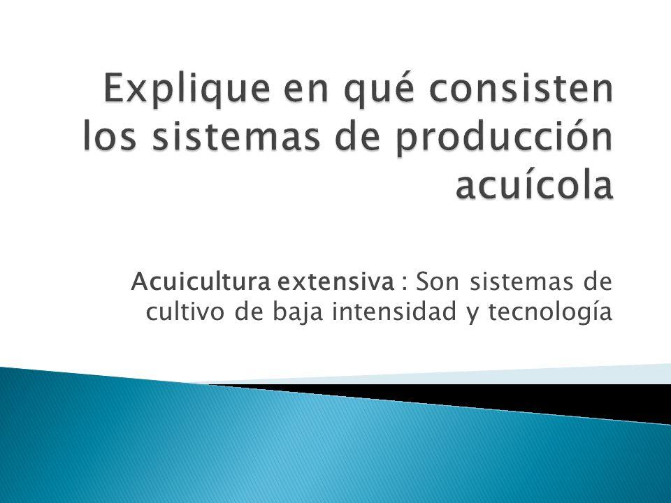 Acuicultura extensiva : Son sistemas de cultivo de baja intensidad y tecnología