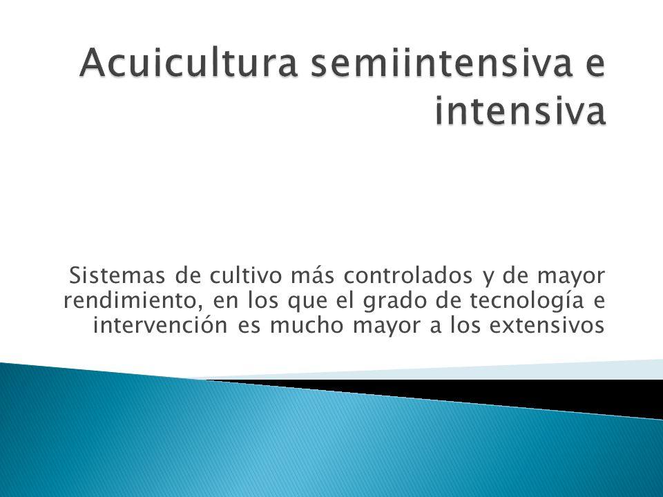 Sistemas de cultivo más controlados y de mayor rendimiento, en los que el grado de tecnología e intervención es mucho mayor a los extensivos