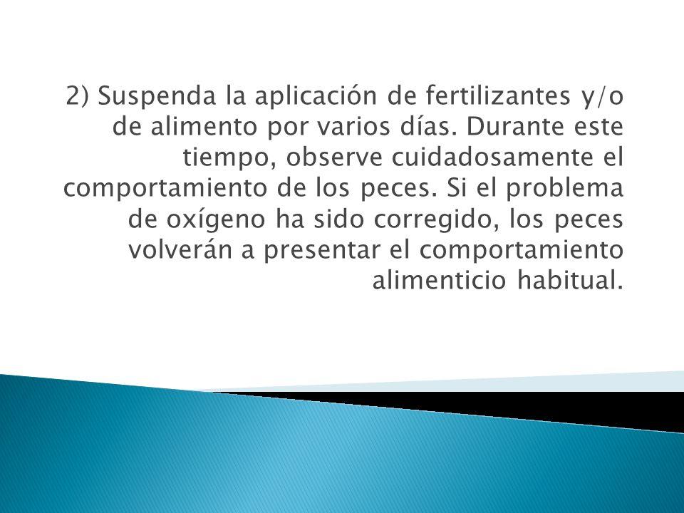 2) Suspenda la aplicación de fertilizantes y/o de alimento por varios días. Durante este tiempo, observe cuidadosamente el comportamiento de los peces