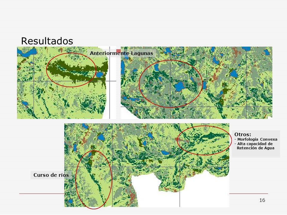 Resultados Anteriormente Lagunas Curso de ríos Otros: - Morfología Convexa - Alta capacidad de Retención de Agua 16