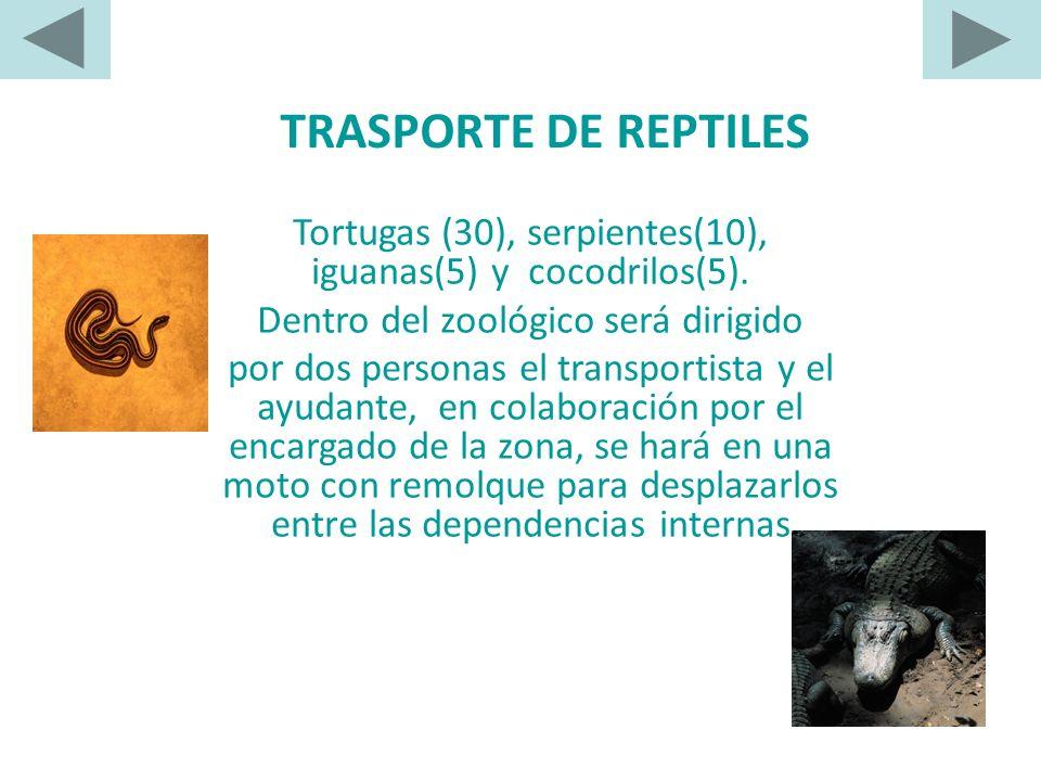 SALUD REPTIL Como causas directas de deshidratación en reptiles tenemos: - Baja humedad relativa del terraro. - No proporcionar agua para beber a los