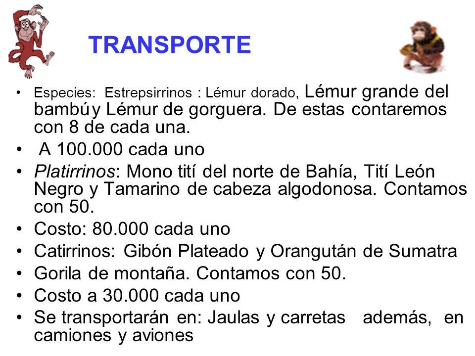 TRANSPORTE Especies: Estrepsirrinos : Lémur dorado, Lémur grande del bambú y Lémur de gorguera.