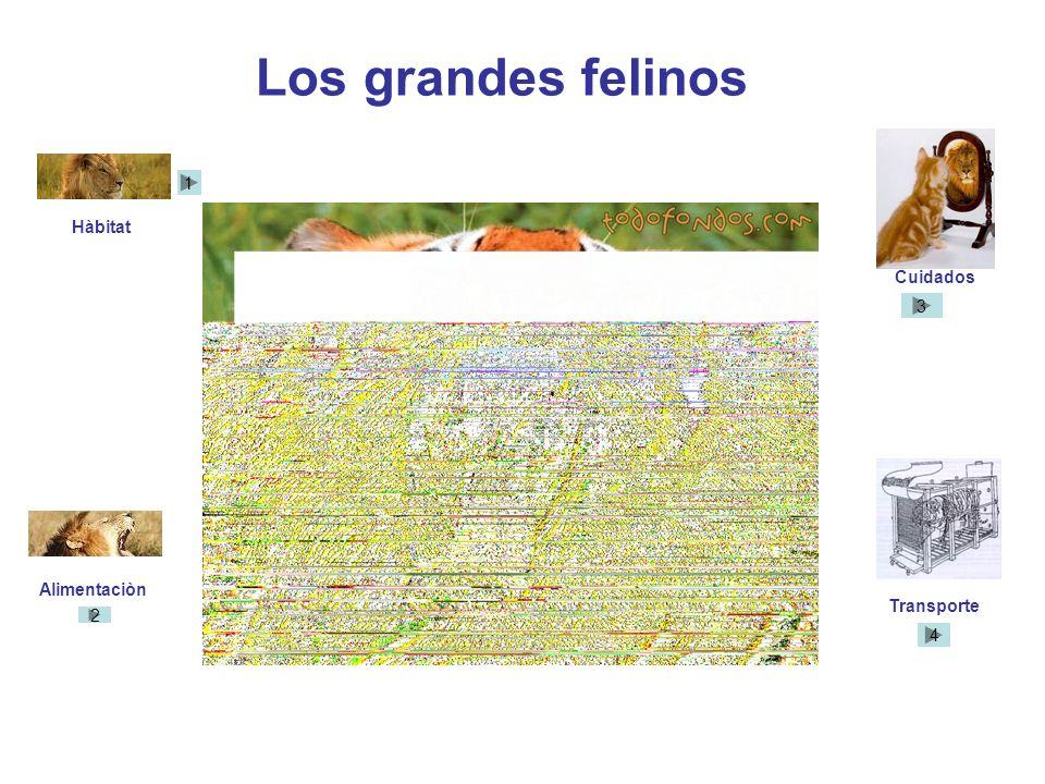 TRANSPORTE Especies: Estrepsirrinos : Lémur dorado, Lémur grande del bambú y Lémur de gorguera. De estas contaremos con 8 de cada una. A 100.000 cada