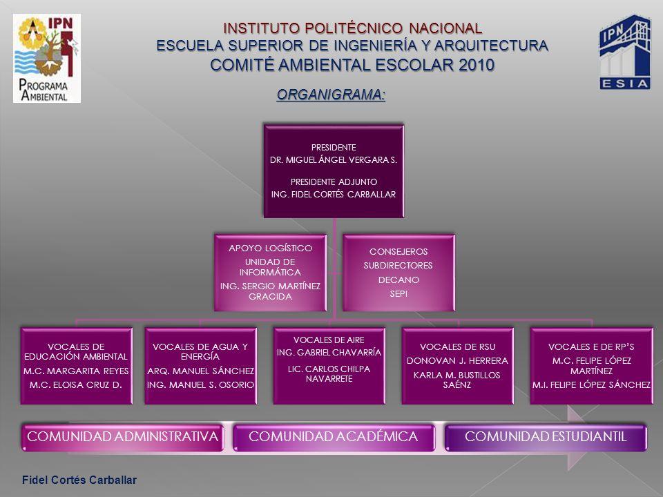 LA INGENIERÍA CIVIL Y EL CAMBIO CLIMÁTICO 2010 = PROGRAMA DE TRABAJO 2010 = Fidel Cortés Carballar