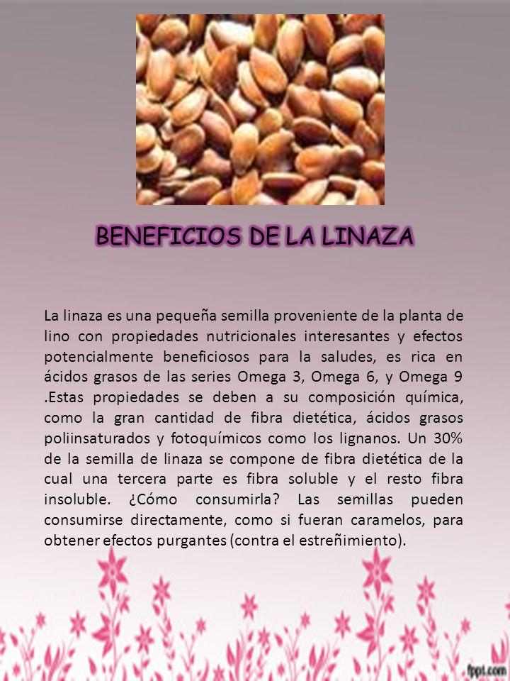 La linaza es una pequeña semilla proveniente de la planta de lino con propiedades nutricionales interesantes y efectos potencialmente beneficiosos par