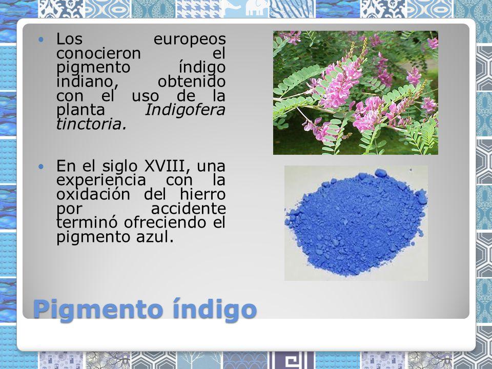 Pigmento índigo Los europeos conocieron el pigmento índigo indiano, obtenido con el uso de la planta Indigofera tinctoria.
