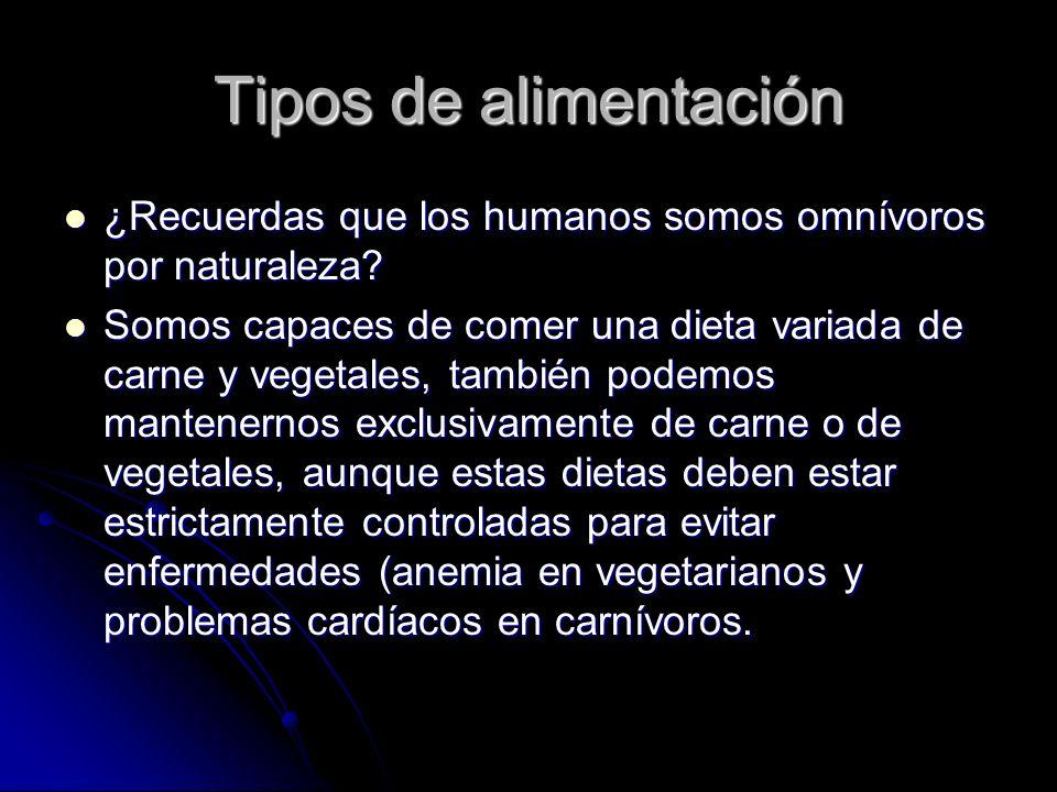 Tipos de alimentación ¿Recuerdas que los humanos somos omnívoros por naturaleza.