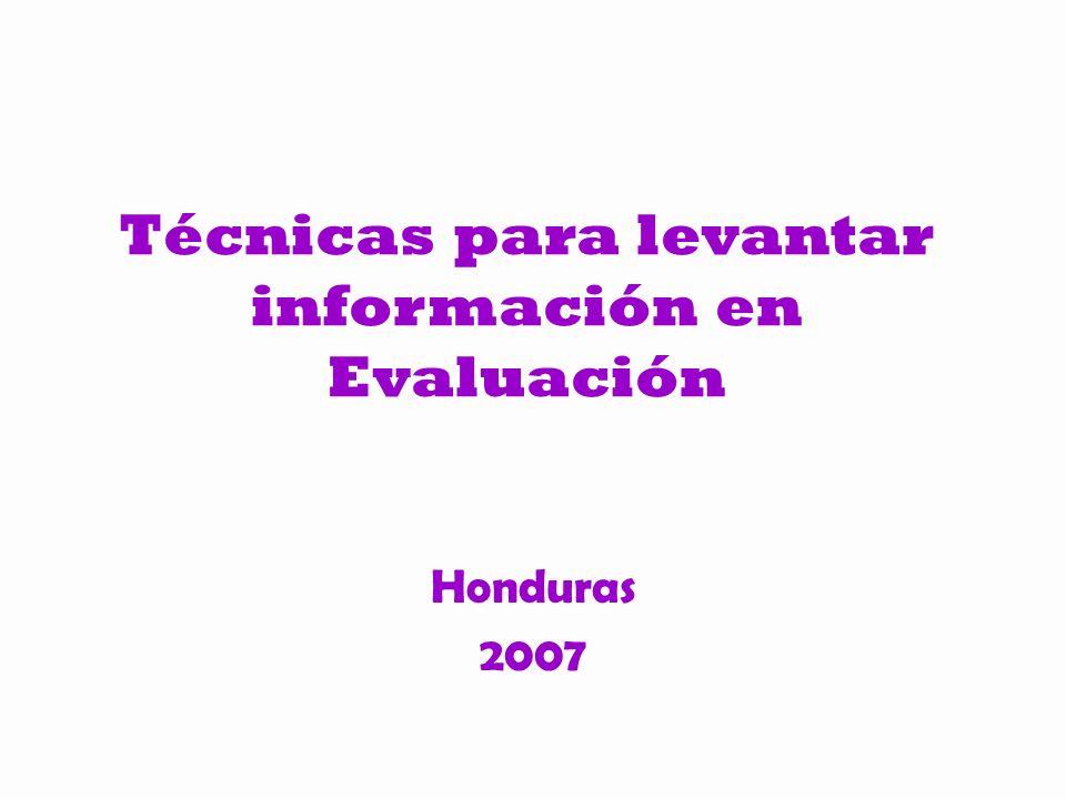 Técnicas para levantar información en Evaluación Honduras 2007