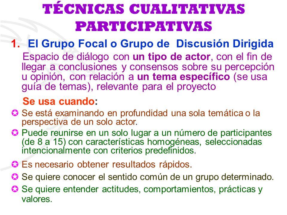 1.El Grupo Focal o Grupo de Discusión Dirigida Espacio de diálogo con un tipo de actor, con el fin de llegar a conclusiones y consensos sobre su perce