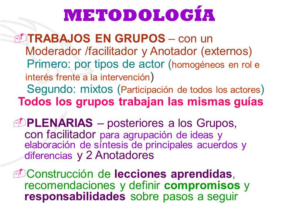 METODOLOGÍA TRABAJOS EN GRUPOS – con un Moderador /facilitador y Anotador (externos) Primero: por tipos de actor ( homogéneos en rol e interés frente