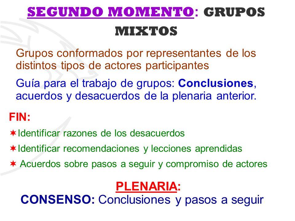 Grupos conformados por representantes de los distintos tipos de actores participantes Guía para el trabajo de grupos: Conclusiones, acuerdos y desacue