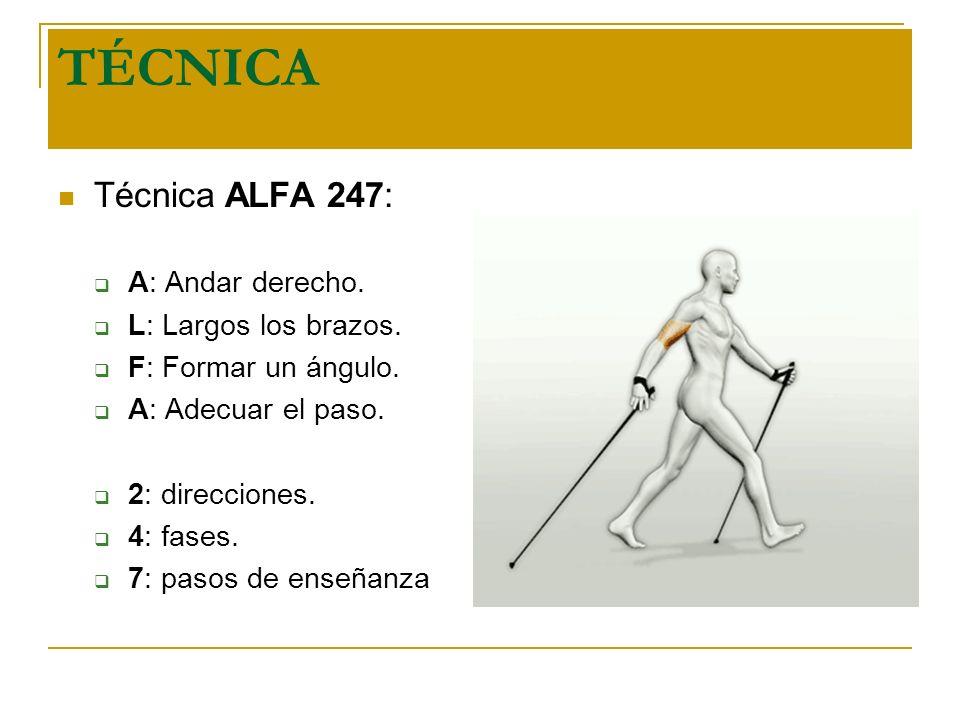 TÉCNICA Técnica ALFA 247: A: Andar derecho. L: Largos los brazos. F: Formar un ángulo. A: Adecuar el paso. 2: direcciones. 4: fases. 7: pasos de enseñ