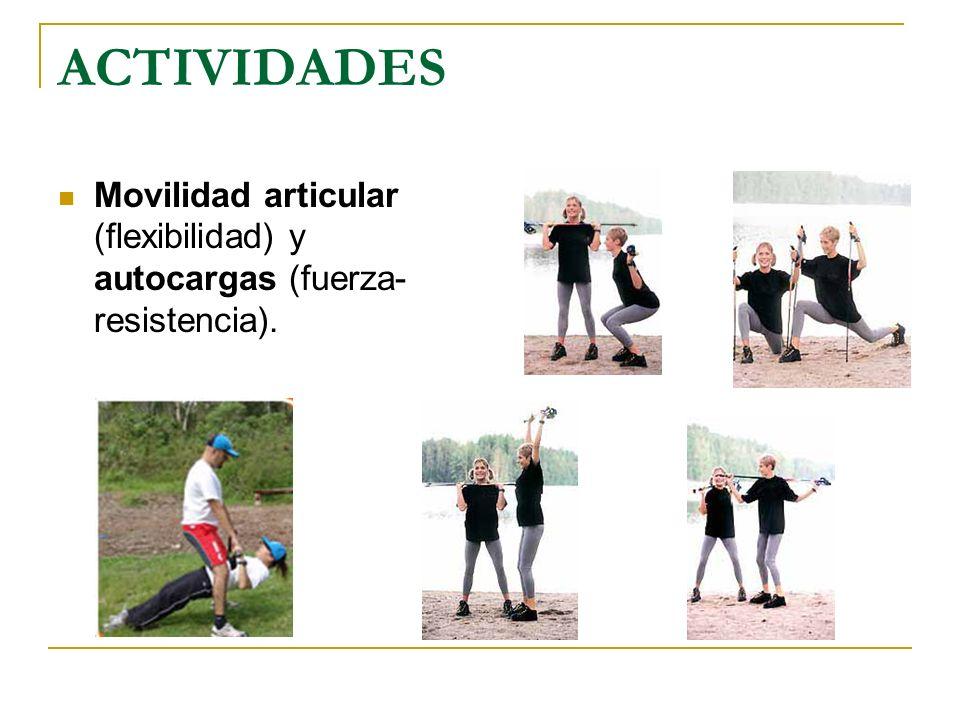 ACTIVIDADES Movilidad articular (flexibilidad) y autocargas (fuerza- resistencia).