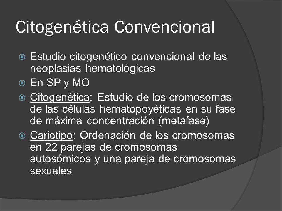 Citogenética Convencional Estudio citogenético convencional de las neoplasias hematológicas En SP y MO Citogenética: Estudio de los cromosomas de las