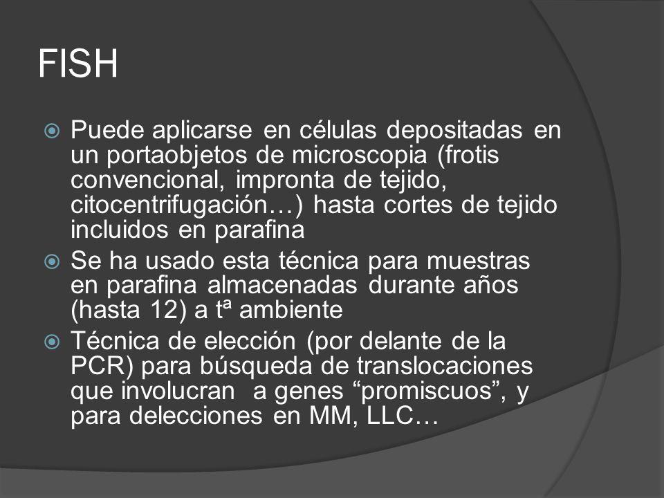 FISH Puede aplicarse en células depositadas en un portaobjetos de microscopia (frotis convencional, impronta de tejido, citocentrifugación…) hasta cor