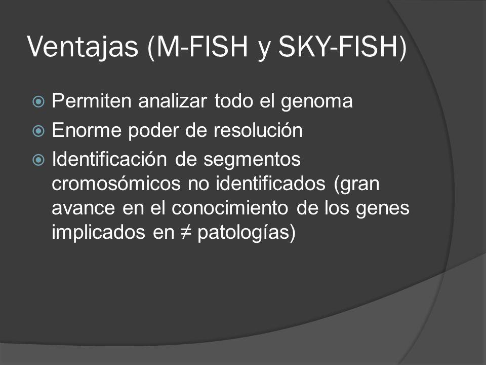 Ventajas (M-FISH y SKY-FISH) Permiten analizar todo el genoma Enorme poder de resolución Identificación de segmentos cromosómicos no identificados (gran avance en el conocimiento de los genes implicados en patologías)