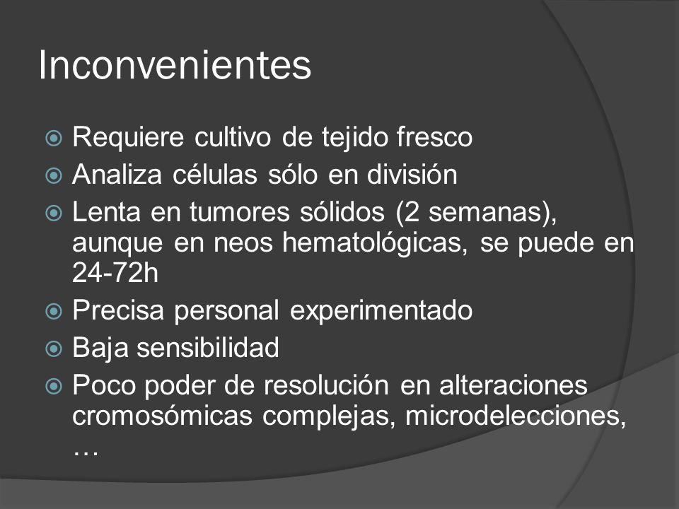 Inconvenientes Requiere cultivo de tejido fresco Analiza células sólo en división Lenta en tumores sólidos (2 semanas), aunque en neos hematológicas,