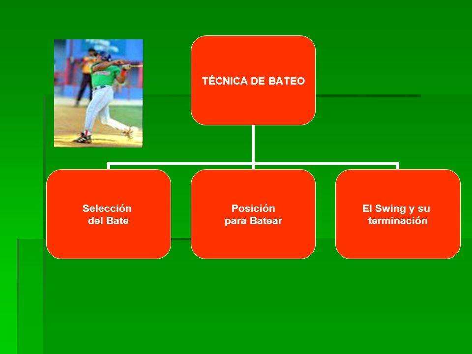 TÉCNICA DE BATEO Selección del Bate Posición para Batear El Swing y su terminación