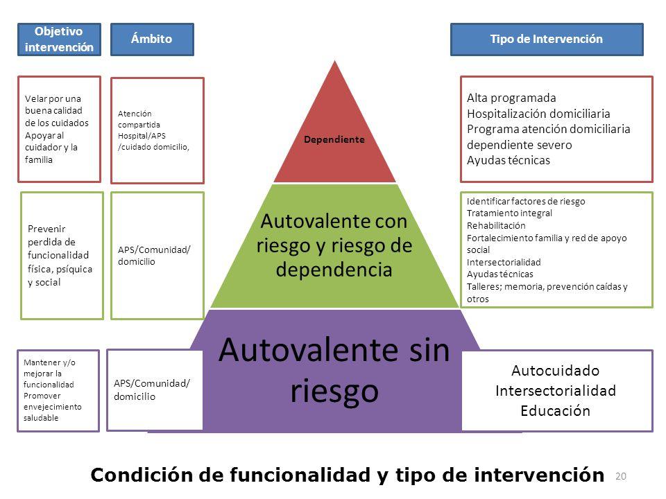 Condición de funcionalidad y tipo de intervención Dependiente Autovalente con riesgo y riesgo de dependencia Autovalente sin riesgo Velar por una buen