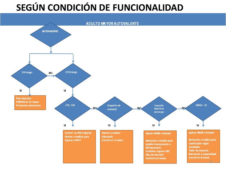 SEGÚN CONDICIÓN DE FUNCIONALIDAD 23