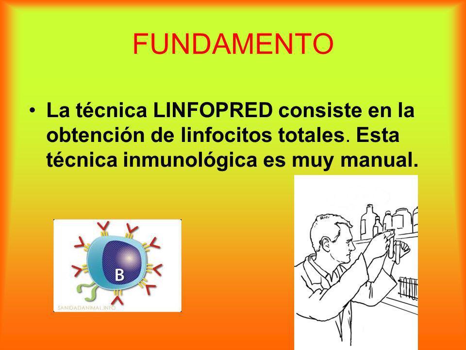 FUNDAMENTO La técnica LINFOPRED consiste en la obtención de linfocitos totales. Esta técnica inmunológica es muy manual.